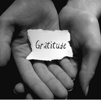 Have Gratitude Today